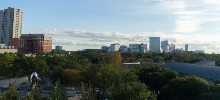 a green park in houston texas
