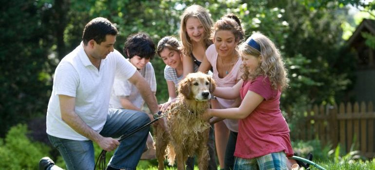 family playing with a dog