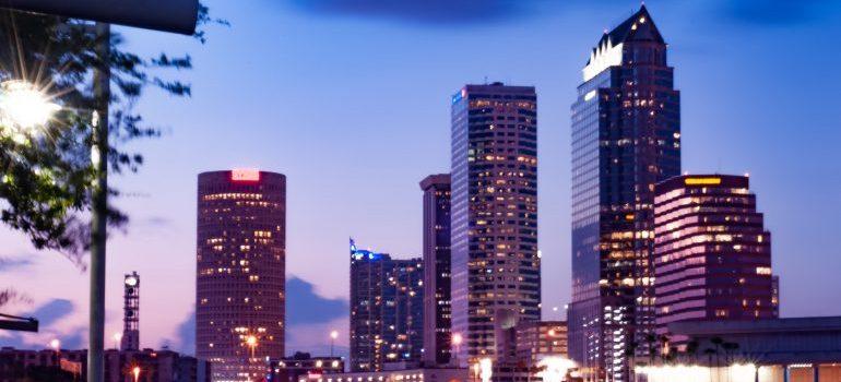 Tampa at sunset