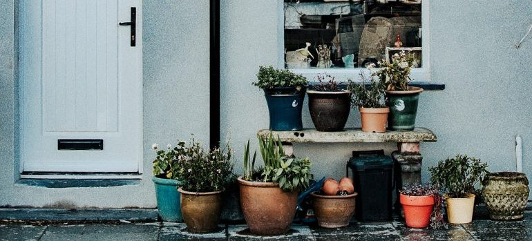 a number of pots with plants sitting beneath a window and next to a door (outside)